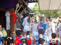 """三社まつり本祭""""三社獅子"""""""